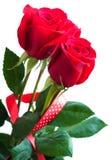 Ramo de rosas rojas Imágenes de archivo libres de regalías