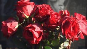 Ramo de rosas rojas secadas almacen de metraje de vídeo
