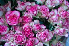 ramo de rosas rojas y blancas Imágenes de archivo libres de regalías