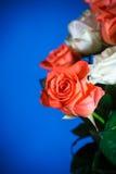 ramo de rosas rojas y blancas Imagen de archivo libre de regalías