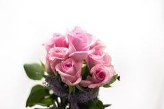 Ramo de rosas rosadas con el cordón púrpura Fotos de archivo libres de regalías