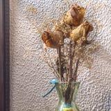 Ramo de rosas secadas Foto de archivo