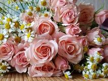 Ramo de rosas y de manzanillas rosadas delicadas en una tabla de madera imagen de archivo libre de regalías