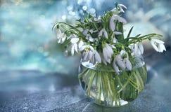 Ramo de snowdrops en un florero Fotos de archivo