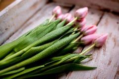 Ramo de tulipán fotos de archivo libres de regalías