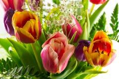 Ramo de tulipanes Fotografía de archivo