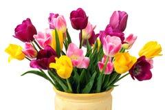 Ramo de tulipanes amarillos, rosados y púrpuras Fotos de archivo libres de regalías