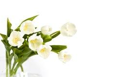Ramo de tulipanes blancos imagen de archivo libre de regalías