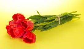 Ramo de tulipanes con una cuerda fotos de archivo