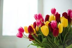 Ramo de tulipanes delante de la escena de la primavera imágenes de archivo libres de regalías