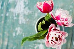 Ramo de tulipanes en una poder de aluminio Foto de archivo libre de regalías