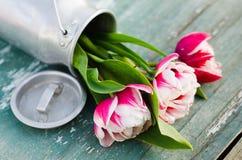 Ramo de tulipanes en una poder de aluminio Fotos de archivo libres de regalías