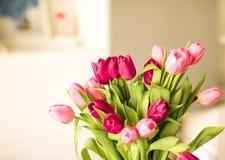 Ramo de tulipanes hermosos, fondo floral foto de archivo