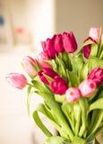 Ramo de tulipanes hermosos, fondo floral imagen de archivo libre de regalías