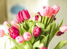 Ramo de tulipanes hermosos, fondo floral fotos de archivo