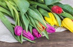 Ramo de tulipanes multicolores Imagen de archivo libre de regalías