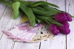 Ramo de tulipanes púrpuras y de hryvnia ucraniano de la divisa nacional, dinero - un regalo para el día de fiesta, concepto imágenes de archivo libres de regalías