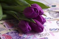 Ramo de tulipanes púrpuras y de hryvnia ucraniano de la divisa nacional, dinero - un regalo para el día de fiesta, concepto imagen de archivo libre de regalías