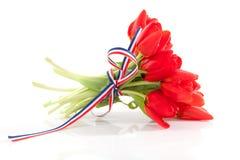 Ramo de tulipanes rojos con la cinta Foto de archivo