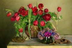 Ramo de tulipanes rojos en una cesta Fotos de archivo libres de regalías