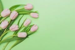 Ramo de tulipanes rosados apacibles en fondo verde claro Imagen de archivo