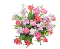 Ramo de tulipanes rosados con la acción canosa Fotos de archivo libres de regalías