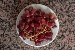 Ramo de uvas foto de archivo libre de regalías
