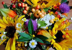 Ramo de wildflowers Imagen de archivo libre de regalías