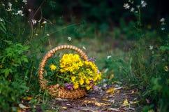 Ramo de wildflowers en cesta Foto de archivo libre de regalías