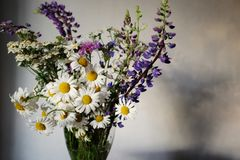 Ramo de wildflowers en un florero Imágenes de archivo libres de regalías