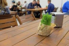 Ramo decorativo de hierba fresca verde en una tabla vacante en estilo rústico en un café fotos de archivo libres de regalías