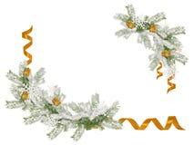 Ramo decorativo dell'albero di Natale con i nastri dorati e posto per testo Fotografia Stock Libera da Diritti