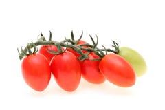 Ramo dei pomodori ciliegia Fotografia Stock Libera da Diritti