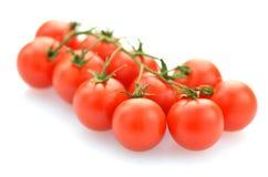 Ramo dei pomodori ciliegia freschi isolati su bianco immagine stock
