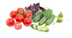 Ramo dei pomodori, dei cetrioli con il gambo e del basilico Immagine Stock