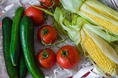 Ramo dei pomodori, due pannocchie di mais e cetrioli freschi Fotografia Stock Libera da Diritti