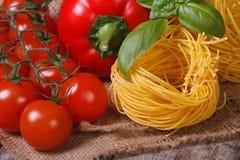 Ramo dei pomodori maturi, della pasta secca, del basilico fresco e del pepe Fotografie Stock