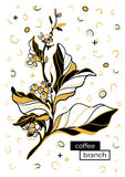 Ramo del caffè con le foglie ed i chicchi di caffè Disegno botanico di contorno Retro stile di Memphis, Pop art Modello di vettor Fotografie Stock Libere da Diritti