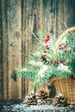 Ramo del invierno para la Navidad Fotografía de archivo