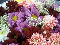 Ramo del multicolor con la flor tal como dalia y crisantemo foto de archivo