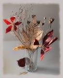 Ramo del otoño Fotos de archivo