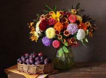 Ramo del otoño de flores y de ciruelos del jardín Fotos de archivo libres de regalías