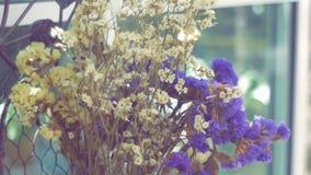 Ramo del primer de flor amarilla y púrpura seca almacen de metraje de vídeo