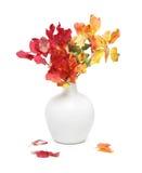 Ramo del Rhus en el florero blanco Foto de archivo libre de regalías