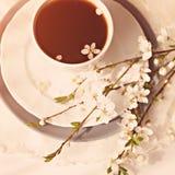 Ramo delicado de la cereza con la taza de coffe/ foto de archivo