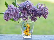Ramo delicado de lila en un florero imagen de archivo libre de regalías