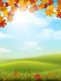 Ramo dell'acero della collina dell'erba del paesaggio di autunno Fotografia Stock Libera da Diritti