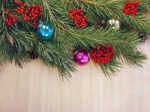 Ramo dell'albero di Natale Fotografia Stock Libera da Diritti