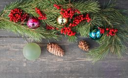 Ramo dell'albero di Natale Fotografia Stock