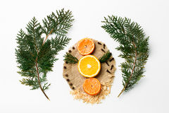 Ramo dell'albero di Natale, arancia, mandarino, decorazione del nuovo anno su bianco Concetto creativo, spazio per testo, logo Immagine Stock Libera da Diritti